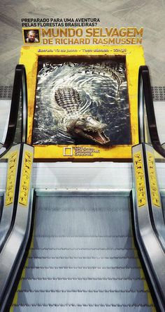 National Geographic - outdoor ad