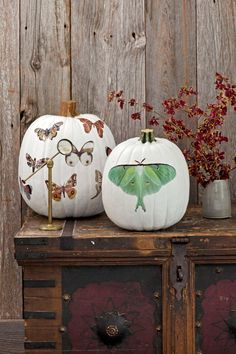 From decoupaged to hand-painted, this crop of clever farm-fresh pumpkin ideas is…