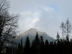 Wanderung zum Popradske See. Foto: Doris Mountains, Nature, Pictures, Hiking, Naturaleza, Nature Illustration, Off Grid, Bergen, Natural