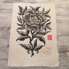 Lacey Law ~ Peony ll ~ Woodblock Print Graphite Drawings, Woodblock Print, Botanical Art, Contemporary Paintings, Watercolor Illustration, Peony, Painting & Drawing, Printmaking, Hand Carved