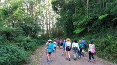 trilha em Morro Reuter, Rio Grande do Sul, em 11/12/2016