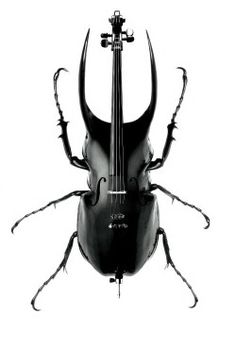 Musical Bugstruments  by Scandinavian DesignLab...would be a fun drawing or collage lesson draw instrument use insect parts to morph it...