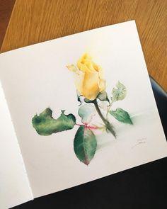 Yellow rose Watercolor Paper Moulin du Roy, 100% cotton Жёлтый цвет Заковыристый уж слишком, но такой тёплый.