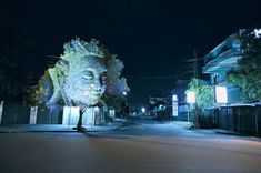 Photos of Faces Projected Onto Trees. Cambodian Trees by Clément Briend. http://www.clementbriend.com/
