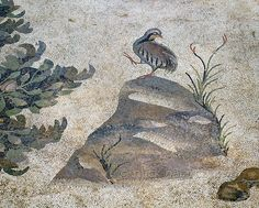 """'Partridge in Byzantine mosaic in Urfa.' A partridge standing on a rock is part of a large hunting scene with several animals and Amazons. The 5/6 th century floor mosaic can be found in the """"Villa of the Amazons"""", a palatial house, that probably belonged to an important administrator of the Eastern Roman Empire, who lived in Edessa (Urfa). The remains of the villa were discovered in 2006. Photo Mick Palarczyk."""