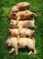 Group Hug...:)