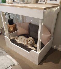 Dog Bedroom, Room Ideas Bedroom, Bedroom Decor, Cute Dog Beds, Pet Beds, Dog Room Decor, Puppy Room, Dog Spaces, Animal Room