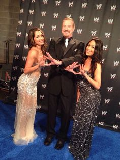 1000+ images about Nikki And Brie Bella on Pinterest | The ...