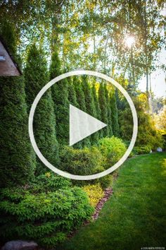 Tree Border: Trees and bushes provide privacy along the border of the property. Garden Paths, Garden Landscaping, Woodworking Plans, Woodworking Projects, Tree Borders, Landscape Borders, Wooden Bookcase, Bamboo Garden, Tropical Houses
