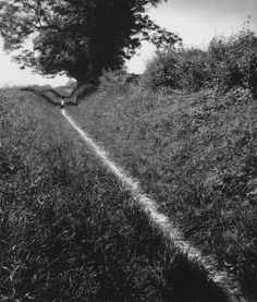 Bill Brandt, The Pilgrim's Way, Kent, 1950 (via idlesuperstar)