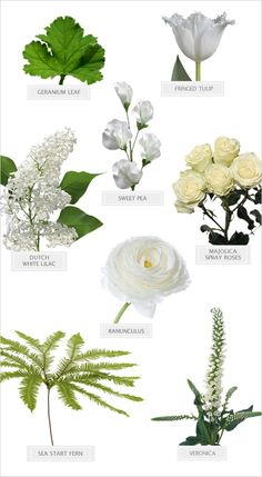 Winter White Bouquet Recipe