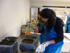 Tijdens deze workshop leert onze chocolatierje diverse soorten bonbons en truffels maken. Deze workshop is zeer uitgebreid en aan het eind ga jenaar huis met een schaal vol heerlijke chocolade.Bij de workshop zijn koffie, thee en een drankje inbegrepen.