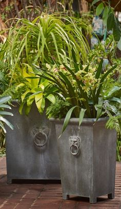Our robust Lowe Planters bring an imposing and smartly dignified ambience to garden and patio spaces.