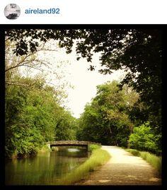 C&O Canal Path