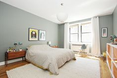 Bluish/Greenish gray wall color?