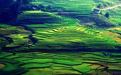 #vietnameseprivatetours