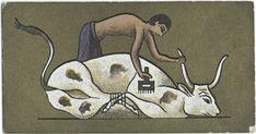Cavanders Ltd. - Ancient Egypt. [Branding the cattle]