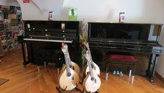 Bom dia! Quer comprar uma guitarra, um piano ou um outro instrumento musical? Venha ao Salão Musical de Lisboa ou consulte o nosso site www.salaomusical.com