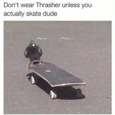 """I think I'll shit on this skateboard. Skater Girls, My Vibe, Aesthetic Grunge, Thrasher, Reaction Pictures, Skateboards, Aesthetic Pictures, Retro, Cute Animals"