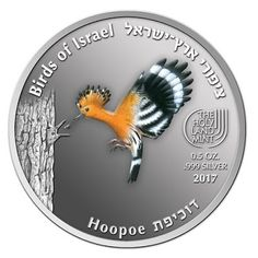 "HOOPOE ( Upupa epops) : First in the ""Birds of Israel"" Series For other coins issued in this 8 Coin Series, please visit. Hoopoe Bird, One Coin, Gold And Silver Coins, Uncirculated Coins, Commemorative Coins, Rare Coins, Coin Collecting, Monet, Israel"