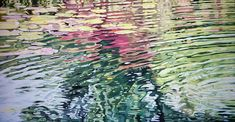 WATER LILIES  oil on canvas,  painted in 2017 100 cm (h) x 200 cm (w) x 4 cm