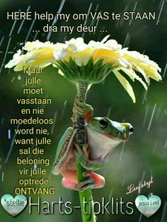 Here help my om vas te staan. I Love Rain, Goeie More, E Words, Afrikaans Quotes, Inspirational Qoutes, Art Hoe, Help Me, Christian Quotes, Favorite Quotes