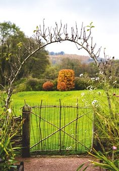 The first in a new four-part series with garden designer Arne Maynard at his Monmouthshire home, Allt-y-bela. In the series he will explain how the changing seasons shape his gardening year, beginning