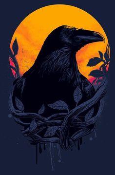 Crow or Raven Crow Art, Raven Art, Raven Totem, Gravure Illustration, Illustration Art, Raabe Tattoo, Quoth The Raven, Arte Obscura, Crows Ravens
