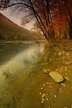 This photo from West Virginia, South is titled 'Shenandoah River Fall Colors'. Shenandoah River, Shenandoah National Park, Virginia Occidental, Harpers Ferry West Virginia, Va Day, Mountain States, Nature Pictures, Beautiful Landscapes, Places To See