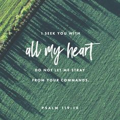 With my whole heart I have sought You; Oh, let me not wander from Your commandments! http://bible.com/114/psa.119.10.NKJV