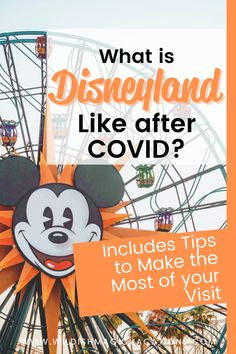 What can you expect at Disneyland now that COVID has changed things? Read this post to find out, including planning tips to help you make the most of your family's next Disneyland vacation. Disneyland Dining, Disneyland Restaurants, Disneyland Resort Hotel, Disneyland Vacation, Disney Hotels, Disneyland California, Disney Vacations, Disney Vacation Surprise, Disney Vacation Planning