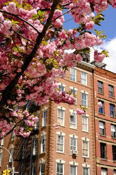 New York City: Instaworthy Streets — Ariana Katsigiannis Soho, New York City, Fashion Beauty, Nyc, Lifestyle, Street, Suho, Walkway, New York