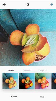 Instagram- tangkapan layar