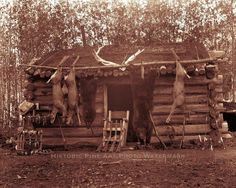 Wow, 3 deer a large bear and smaller bear. Love the guns and fishing poles line up....HUNTER TRAPPER TRADER CABIN PHOTO FRONTIERSMAN PIONEER OLD WEST 1890  #21294