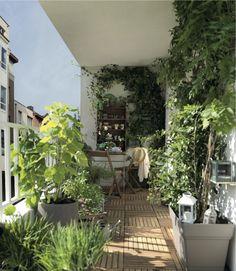 Balcon Small Balcony Garden, Small Balcony Decor, Balcony Plants, Rooftop Garden, Balcony Design, Garden Design, Balcony Gardening, Balcony Ideas, Small Terrace