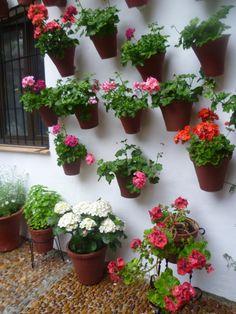 white, terra-cotta pots, geraniums, wrought iron and beautiful stonework.