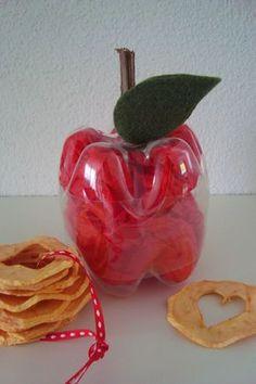 Kleefalter: selbstgedörrte Apfelringe im PET-Flaschen-Apfel verschenken