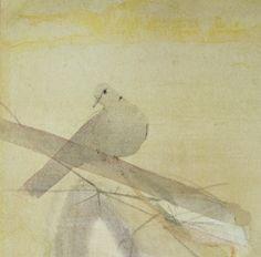 Collared Dove I