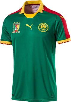 Cameroon Puma 2017 African Nations Cup.