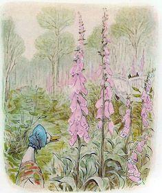 Immagine di http://3.bp.blogspot.com/-Xfzo0azpqYg/UU7N1C54S6I/AAAAAAAAc1o/nBsHIN_pB1E/s640/36.jpg.