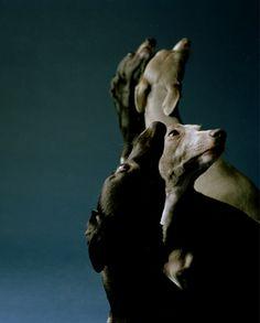 Jo Longhurst, The Refusal III,1, 2007