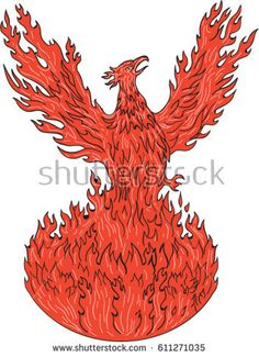 Drawing sketch style illustration of a phoenix rising up from fiery flames, wings raised for flight set on isolated white background.   #phoenix #sketch #illustration