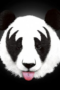 Poster - Kiss Of A Panda