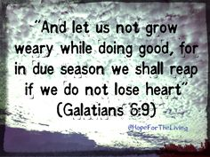 """Galatians 6:9 """" And let us not be weary in well doing: for in due season we shall reap, if we faint not."""