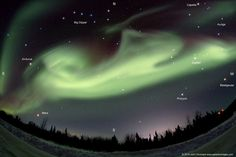 Astronomy Picture of the Day for 29 Apr 2014. While leading his annual aurora tour last month near Fairbanks in central Alaska, astrophotographer John Chumack and his company saw a most unusual aurora. This bright aurora appeared to change into the shape of a jumping dog, complete with a curly tail.