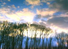 Items similar to i whisper your name into the sky on Etsy Your Name, Versailles, Whisper, Art Photography, Names, France, Sky, Sunset, Creative
