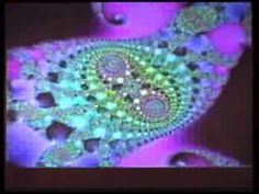 As Above So Below, An Introduction To Fractal Evoloution!! -Bruce Lipton - YouTube