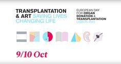 Um dia dedicado à 'arte da transplantação' | Pelo Rim