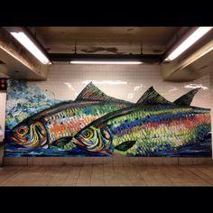 Rainbow Trout in the Brooklyn Subways NYC