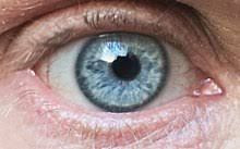 eye color chart - Google Search Eye Color Chart, Eyes, War, Google Search, Eye Color Charts